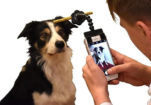 Rocita Palo de Selfie portátil para Mascotas, para fotografía de ...