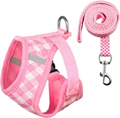 Petetpet Puppy Harness and Leash Breathable Adjustable Harness Set for Cat Small Dogs Pets Walking Training Running Hiking