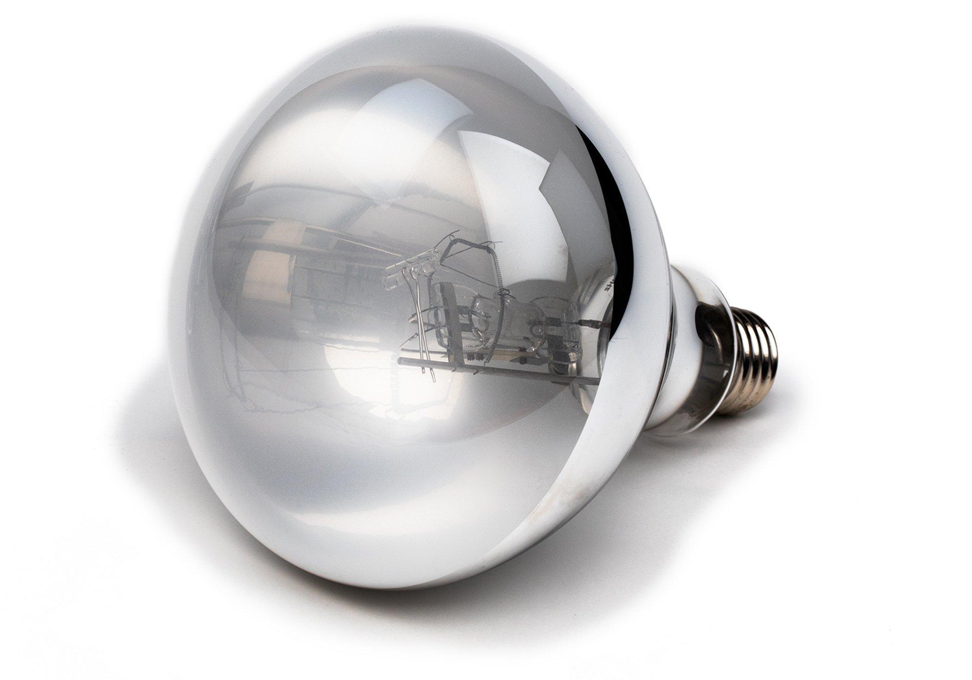 Evergreen Pet Supplies 100 Watt UVA UVB Mercury Vapor Bulb/Lamp/Light for Reptile and Amphibian Use - Excellent UVA UVB Reptile Light/Reptile Bulb