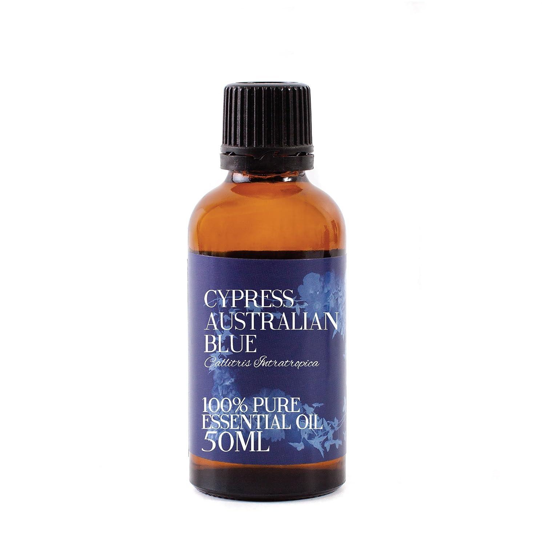 Mystic Moments | Cypress Australian Blue Essential Oil - 50ml - 100% Pure   B006IPYBEC