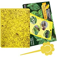 Kensizer 10-Pack Dual-Sided Yellow Sticky Traps for Flying Plant Insect Like Fungus Gnats, Whiteflies, Aphids, Leaf…
