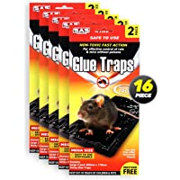 SAS Pest Control 16PK Rat Mouse Traps Extra Large & Strong 20.5 x 11cm