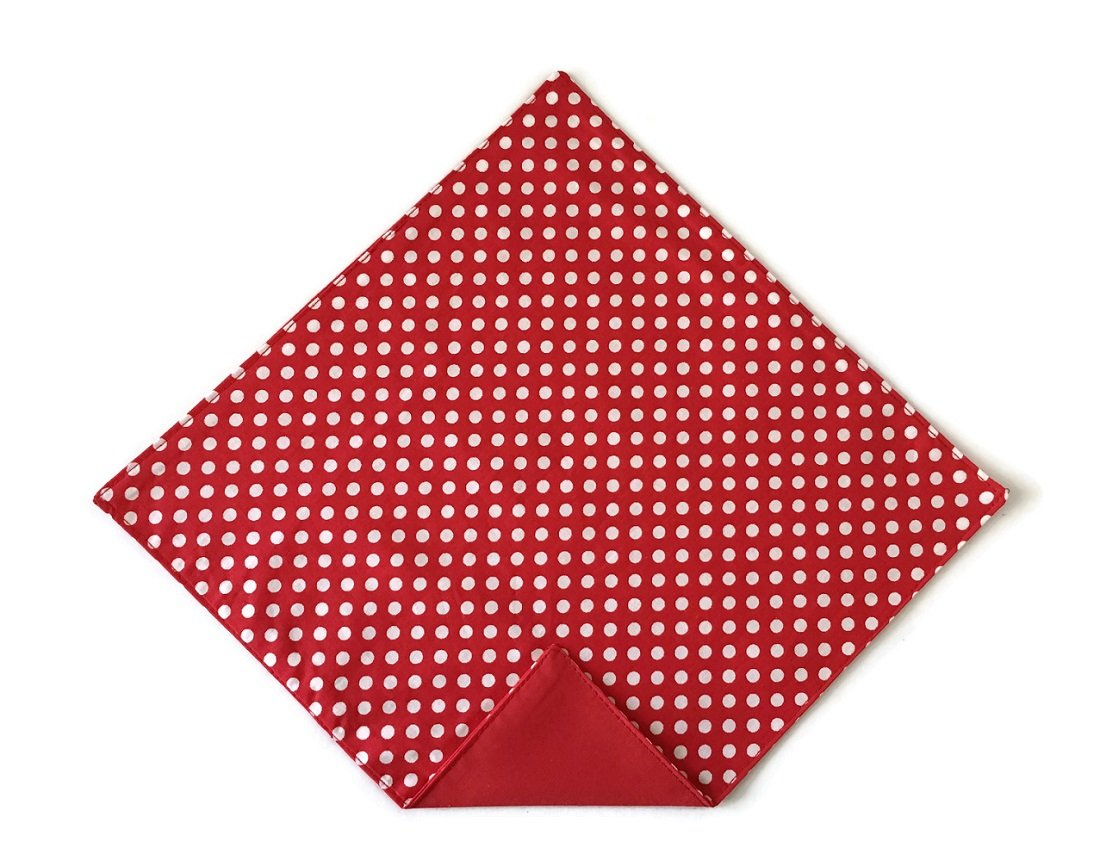 Men's Handkerchief Red and White Polka Dot Pocket Square (Men's)