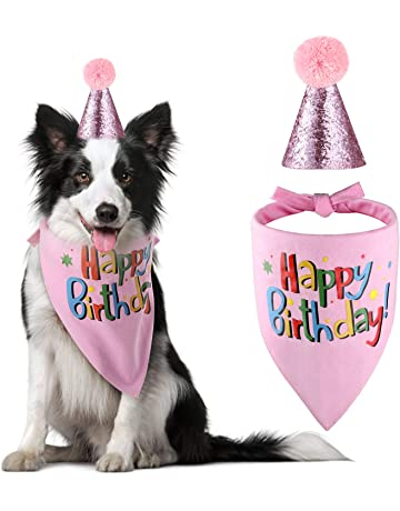 e7253b586c6 The Creativehome Dog Birthday Bandana Hat Scarf Party Supplies