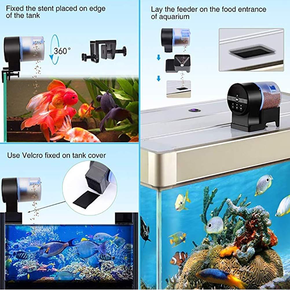 TUDIO Alimentador Peces Automático, Dispensador de Comida Acuario, Alimentador Automático de Peces para Acuario: Amazon.es: Deportes y aire libre