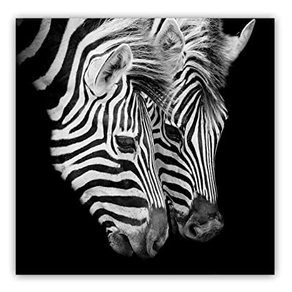 Studio 500 museum quality wall art two african zebras 36w x 36quot