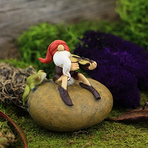 Top Collection Miniature Fairy Garden and Terrarium Gnome Playing Fiddle with Frog Statue