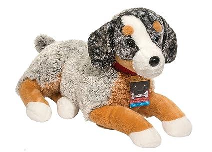 Douglas Rescue Pups Breezy Australian Shepherd Mix