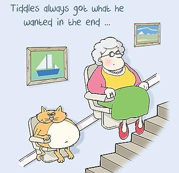 Twizler Carte Humoristique Avec Fat Cat Vieille Dame Et D Escalier