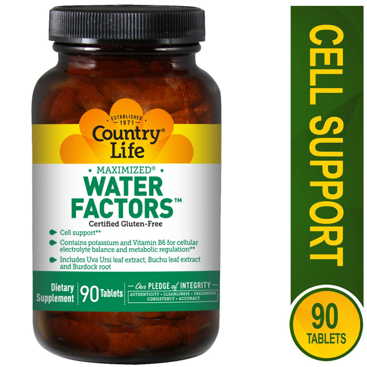 Country Life Water Factors - with Potassium and B6 for Electrolyte Balance - 90 Tablets