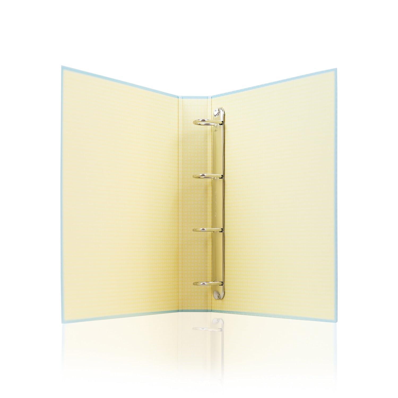 Mr. Wonderful WOA02544 - Clasificador con diseño Ciencias o letras con este archivador seguro que la petas: Amazon.es: Oficina y papelería