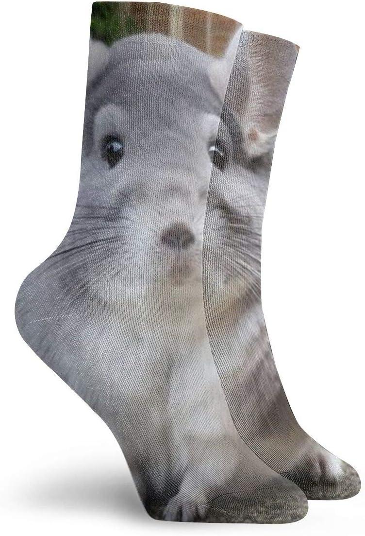 Jokerbilibili Perfectly Round Chinchilla Camerons Unisex Print Athletic Quarter//Ankle Running Hiking Socks-Weekend Lounge Short Crew Socks