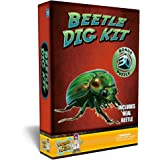 Discover with Dr. Cool Beetle Puzzle Dig Kit –Excavate A Real Preserved Beetle!