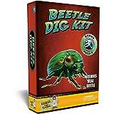 Beetle Puzzle Dig Kit –Excavate A Real Preserved Beetle!