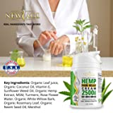(2-Pack) Hemp Cream Pain Relief by New Age