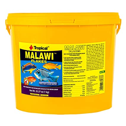 Amazon com : Tropical USA Malawi Flakes Fish Food Bucket, 1