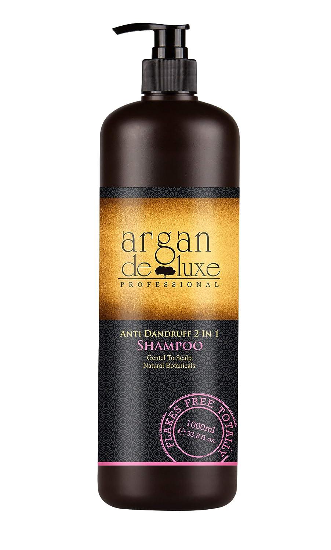 Arganöl 2-Phasen-Feuchtigkeitsspray in Friseur-Qualität ✔ Beste Pflege-Formel ✔ Erfrischend, Entwirrend, Hochwirksam ✔ Argan DeLuxe, 120ml Argan DeLuxe Professional