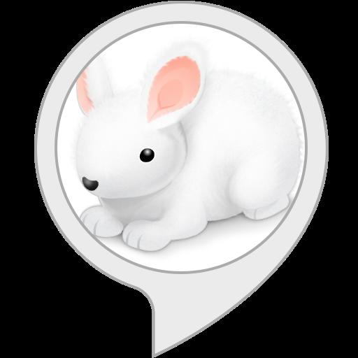 バレーウサギちゃんの英単語