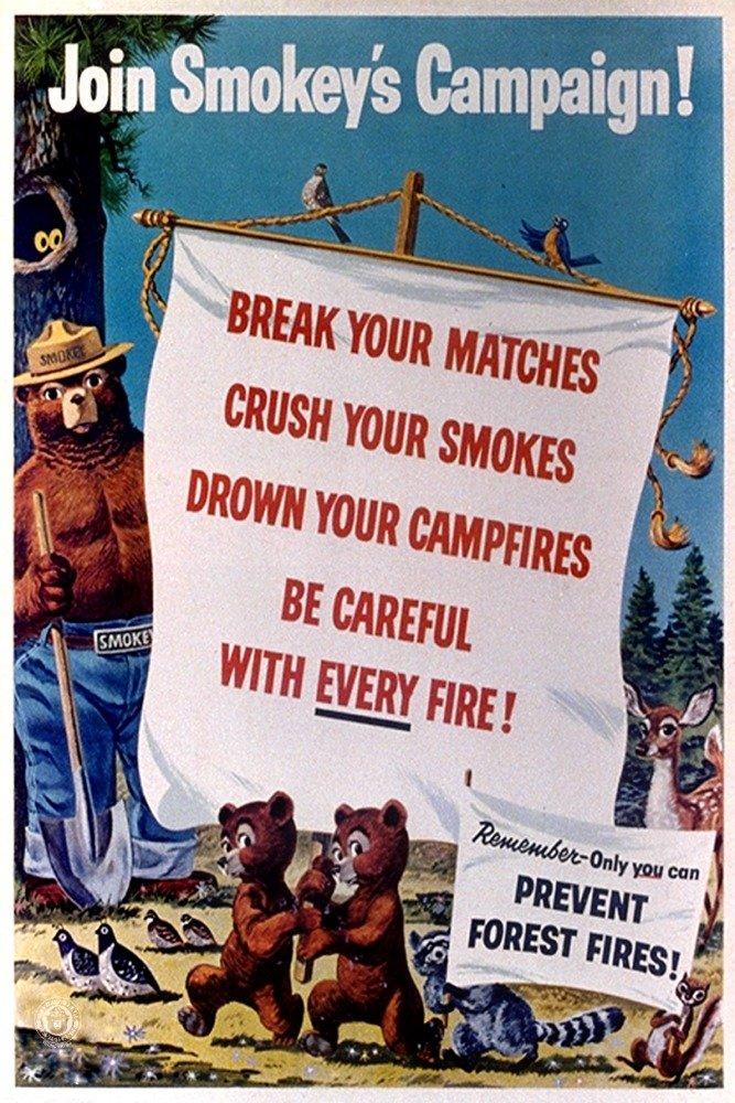 Smokey Bear – Joinスモークのキャンペーン – ヴィンテージポスター 16 x 24 Giclee Print LANT-79793-16x24 16 x 24 Giclee Print  B06XZPSQPT
