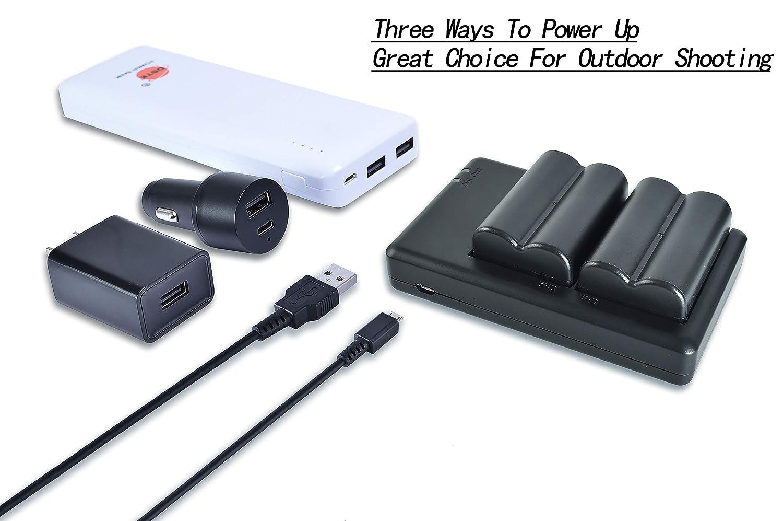 Bater/ía Cargador Compatible para Sony a200,a300,a350,a700,Alpha a58,Alpha a99,DSLR-A100W,DSLR-A100W//B,DSLR-A200,DSLR-A200K,DSLR-A200W,DSLR-A200WB,DSLR-A300K C/ámara 2300mAh//7.4V DSTE 2PCS NP-FM500H