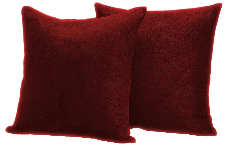 Amazoncom Faux Suede 2 Pack Decorative Pillow Covers 20x20