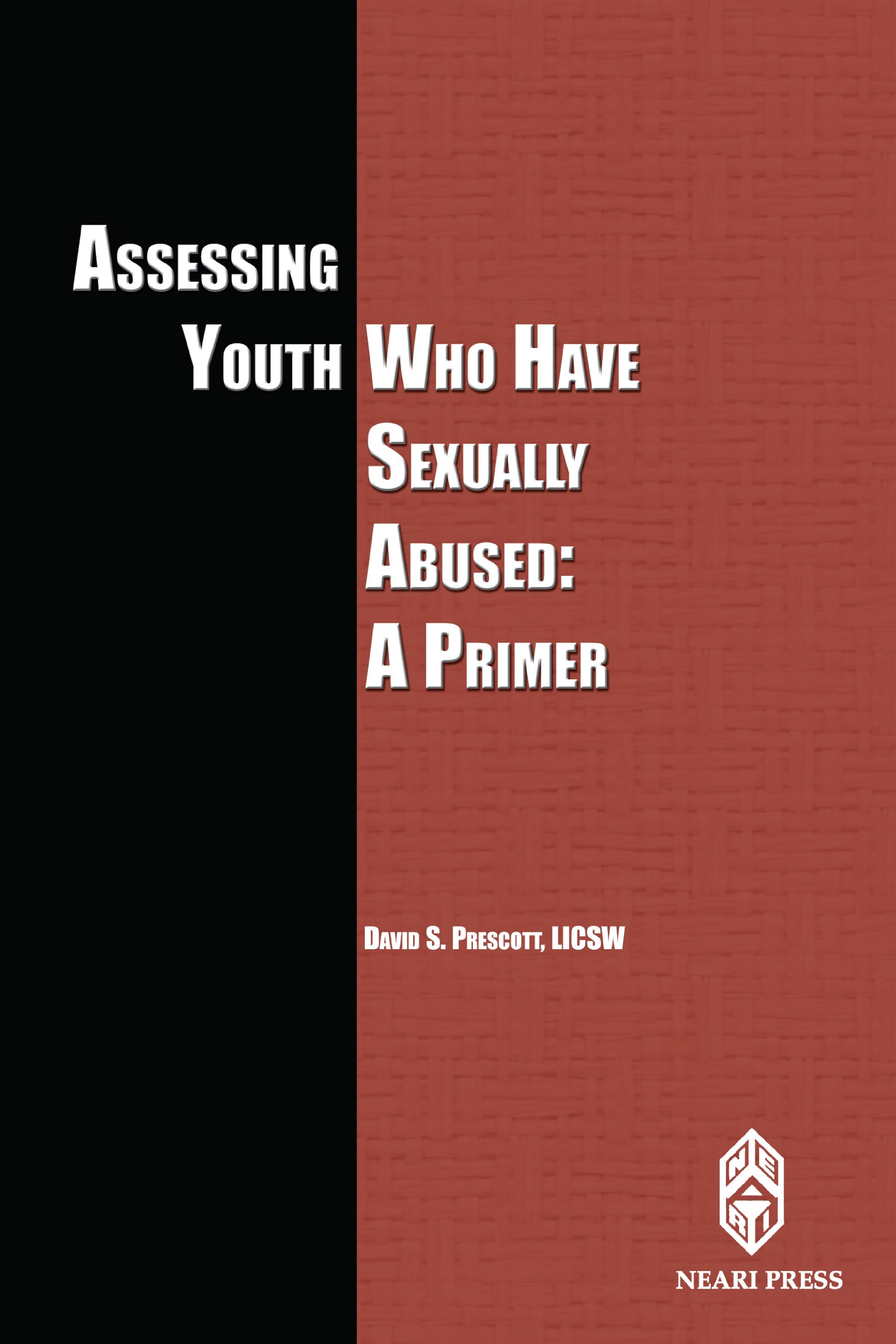 Assessing Youth Who Have Sexually Abused: A Primer ebook