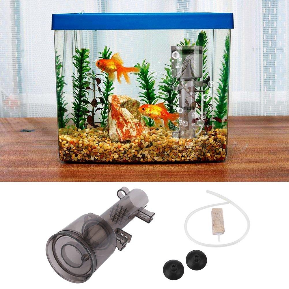 Estink Skimmer de proteína del acuario, filtro de proteína de tanque de pescado para agua dulce marina de agua salada(RS-4002): Amazon.es: Productos para ...