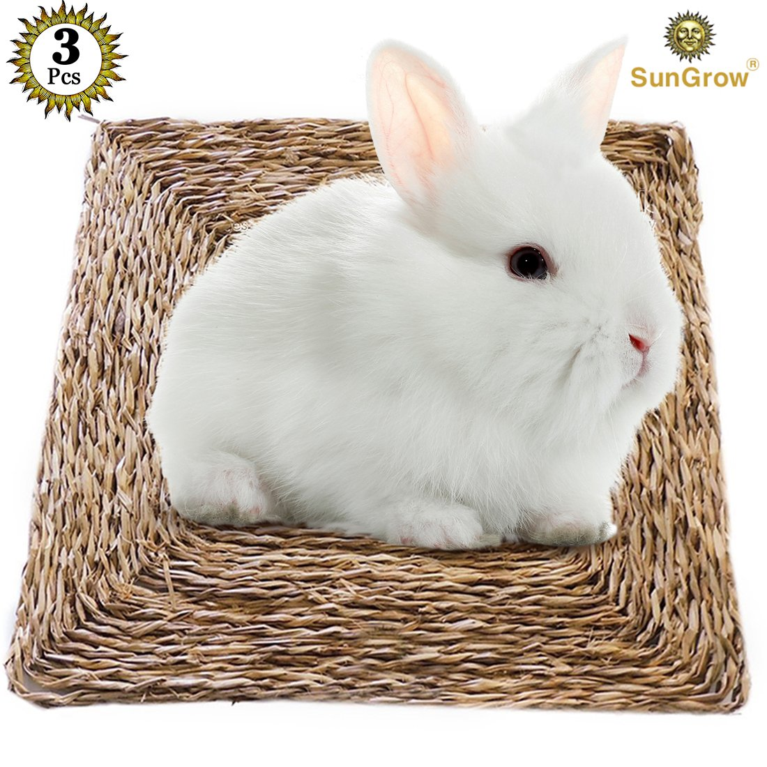 3 Natural Seagrass Rabbit Mats - Handmade Woven Play Mat - Safe & Edible Chew Toy - Treat Bunny's Sore Hocks - Protect Paws from Wire Cage - Allergen-free, Water-resistant, 100% Natural Beds