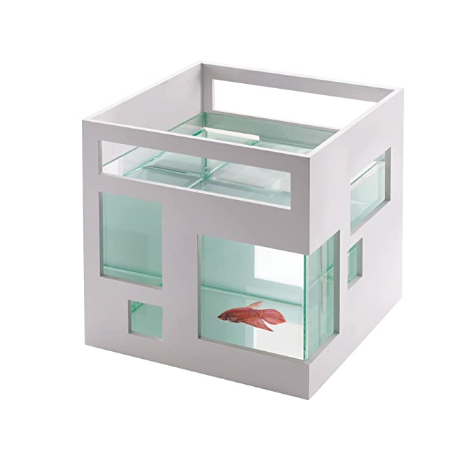 A $28 hotel aquarium for a beta fish that I had in my wish list for some reason | Save for a house