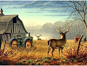 5D Diamond Painting Kits for Adults Kids, DIY Round Deer Full Drill Rhinestone Art Craft for Home Wall Decorr 15.7 X 11.8 Inch by Cenda