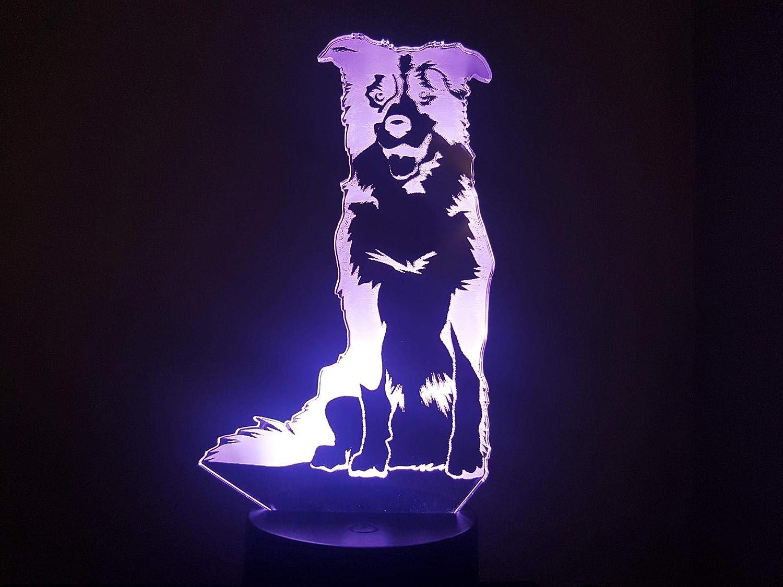 Chien Border Collie, lampe 3D à LED