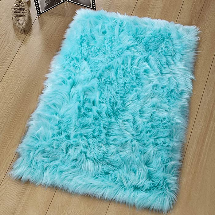 The Best Teal Office Rug