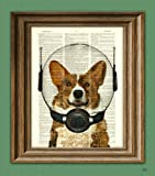 Amazon Price History for:Space Corgi. Lieutenant Waffles of the Space Patrol Cardigan Welsh Corgi dog in a space helmet illustration dictionary page book art print