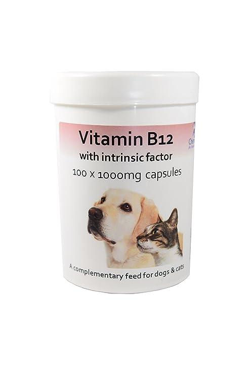 Cápsulas de vitamina B12 con factor intrínseco para perros y gatos x 100