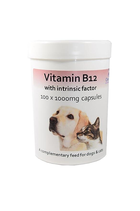 Cápsulas de vitamina B12 con factor intrínseco para perros y gatos x ...