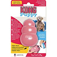 KONG - Puppy Toy - Natural Teething Rubber - Fun to Chew, Chase and Fetch (Colour May Vary) - for Small Puppies