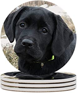 4pcs Awaiting Spring Labrador Puppy Black Lab Ceramic Coasters For Drinks,Heat Resistant Drink Coaster Round Drinks Absorbent Stone Coaster Set For Friends Men Women Funny Birthday Housewarming