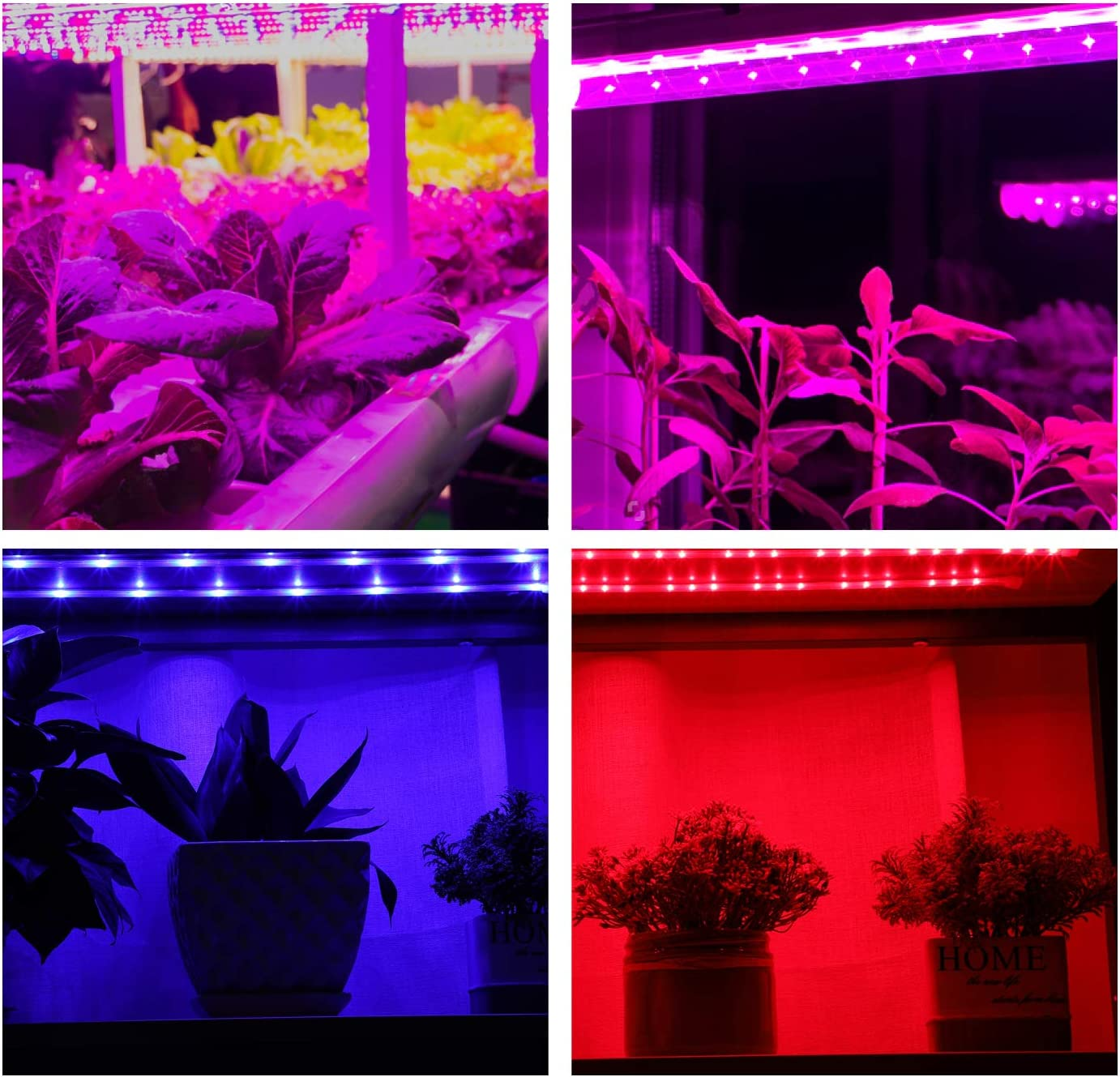 3 Pack Grow Light Strips for Indoor Plants with Timer, OxyLED 15W 6 Ft 108 LED Plant Growing Lamps 5 Dimmable Levels, Adhesive Light Bars Waterproof for Succulents Hydroponics Greenhouse Gardening