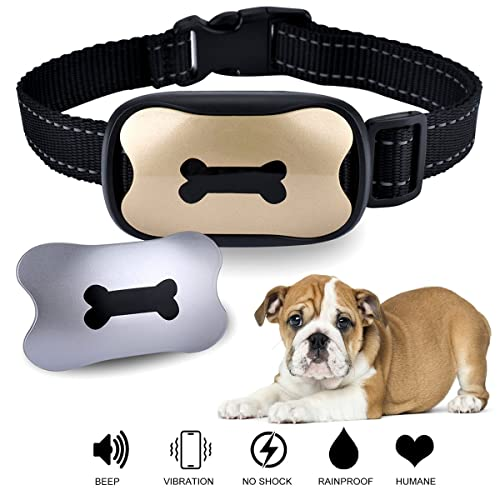 Amazon Prime Dog Training Collars