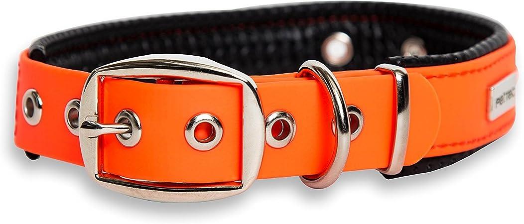 Oferta amazon: PetTec Collar de Perro Cómodo y Duradero, Fabricado con Trioflex lo Que lo Hace Fuerte; para Perros Grandes o Pequeños, Ajustable y con Relleno Impermeable (Naranja)