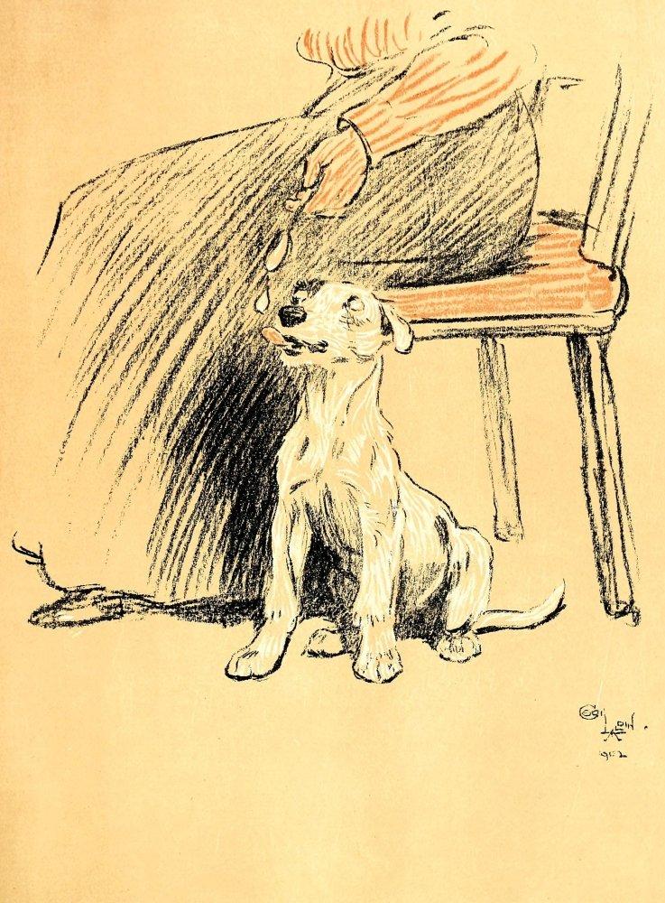Cecil Aldin A Dog Day 1902 Art Repro Photo Print Picture No.26