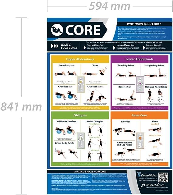 Ejercicio básico | Entrenamiento de núcleo completo | Mejora el entrenamiento de fuerza | Póster laminado de gimnasio y hogar | Incluye soporte de ...