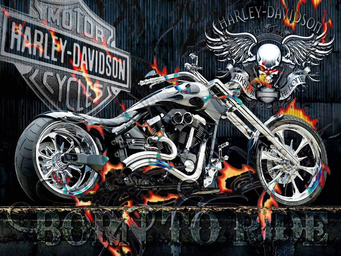 Ghost Rider Diamond Painting Kits for Adults and Kids 5D DIY Comics Full Drill Round Mosaic Rhinestones Square Canvas Cross Stitch Kits Beginner for Home Wall