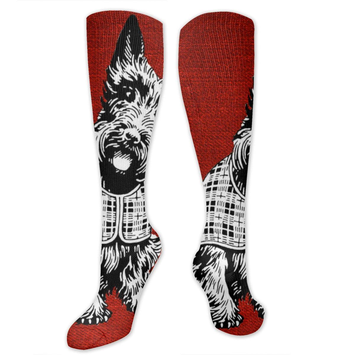 Chanwazibibiliu Innocent Eyes of A Dog On A Red Background Mens Colorful Dress Socks Funky Men Multicolored Pattern Fashionable Fun Crew Cotton Socks