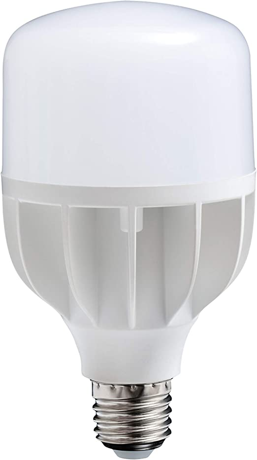 D15800 18W Energy Saving Daylight Bulb