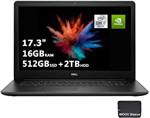 Dell Inspiron Business Laptop   17.3