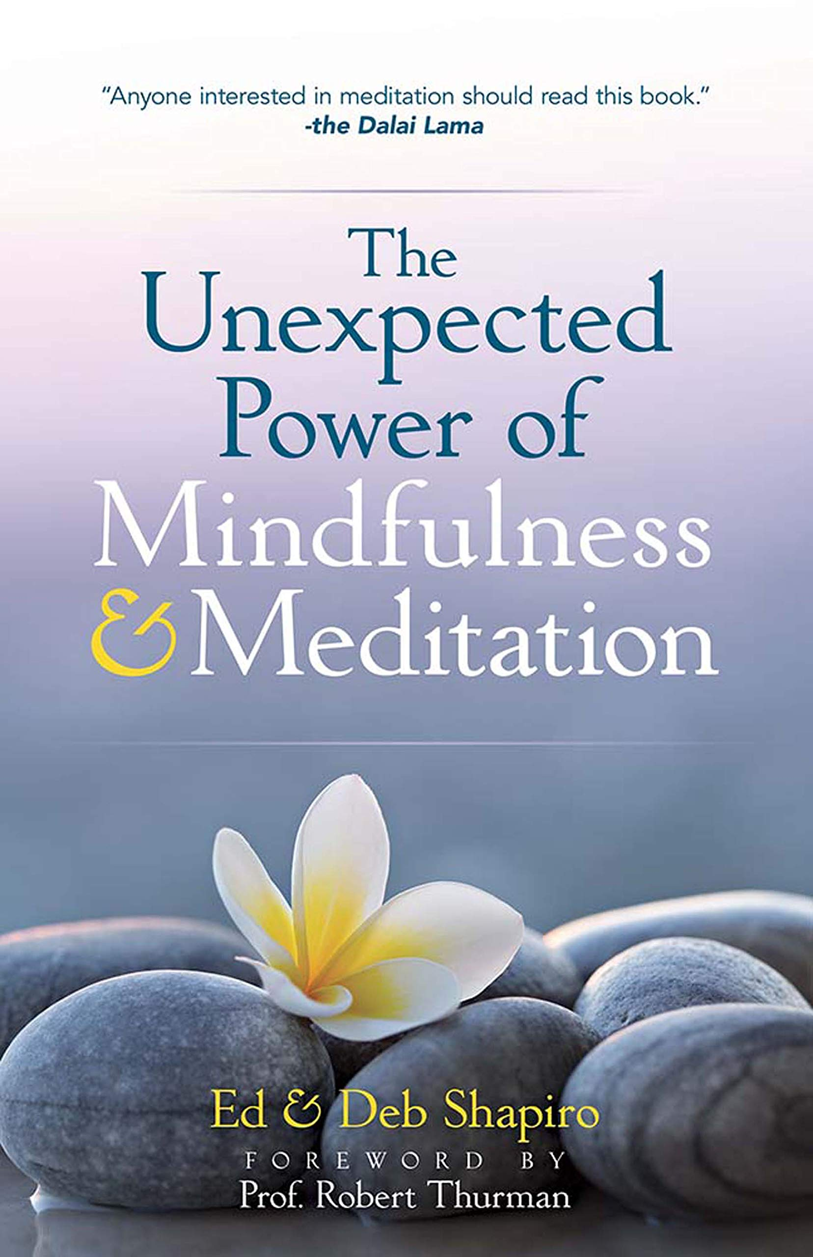 The Unexpected Power of Mindfulness and Meditation: Amazon ...