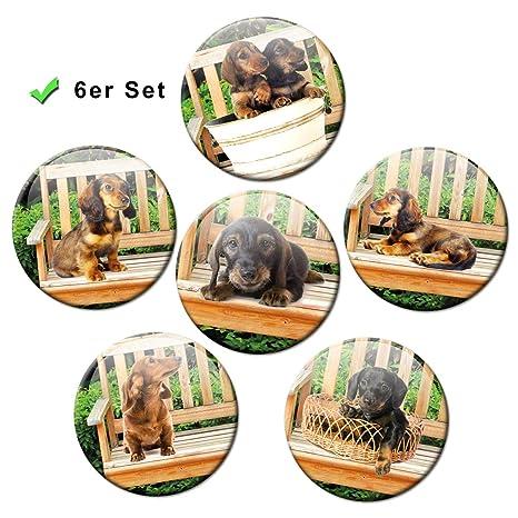 Imanes para frigorífico, diseño de Perro, 6 Unidades ...