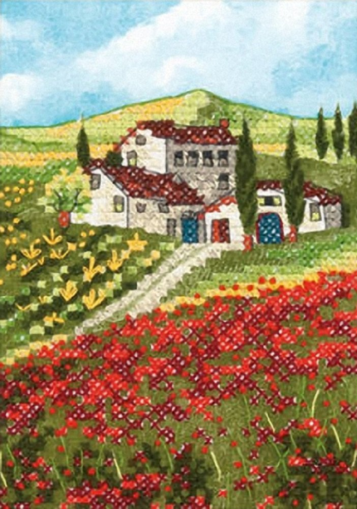 Dimensions Blooming Poppies Mini Counted Cross Stitch Kit, Multi-Colour 65064
