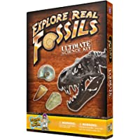Discover with Dr. Cool Ultimate Fossil Science Kit